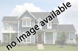 8813 SIDE SADDLE RD SPRINGFIELD, VA 22152 - Photo 2
