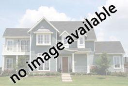 1276 WAYNE STREET #319 ARLINGTON, VA 22201 - Photo 3